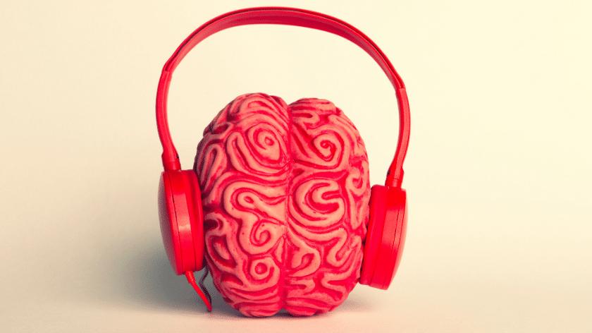Citation 5 clés de neuro-éducation pour relever le défi des infox