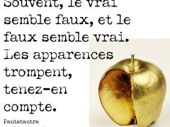 citation-apparence