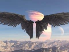 Numérologie angélique : Comment votre ange gardien communique avec vous ?