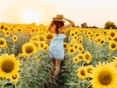 Apprendre à créer son propre bonheur